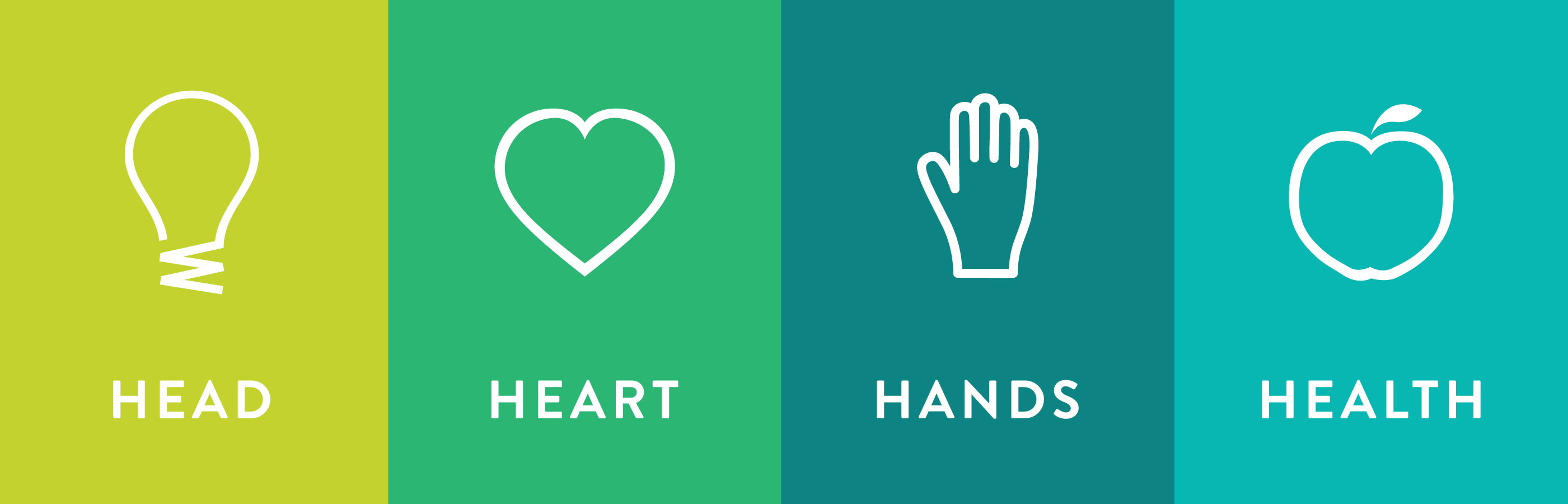 4H tenants:  head, heart, hands, health